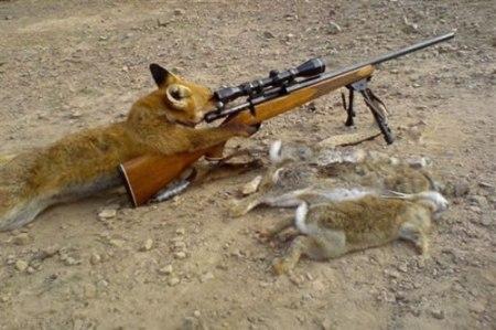 56-good-hunting