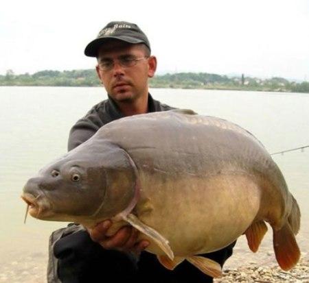 76-big-weird-fish